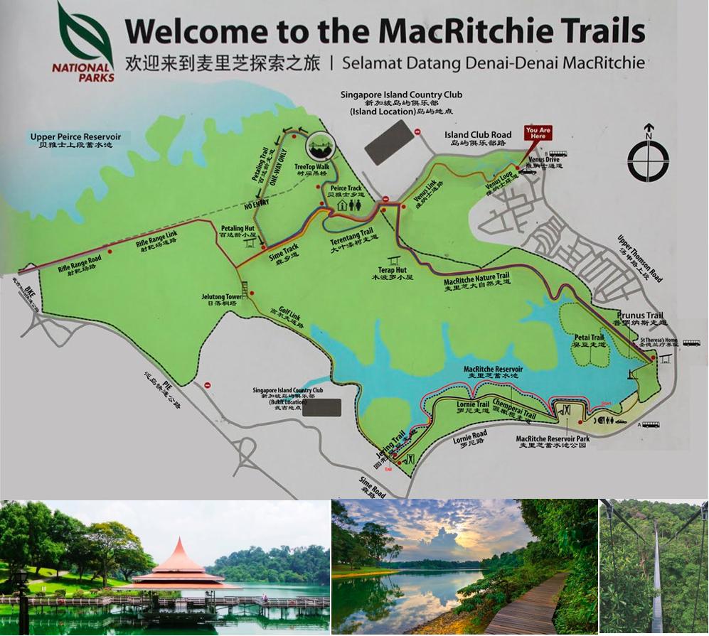 麦里芝蓄水池和公园探索旅游