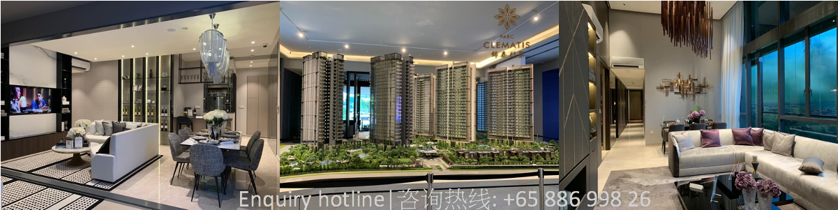 welcome to 锦泰门第 Parc Clematis showflat